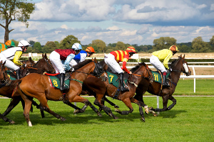 horse-racing300x200