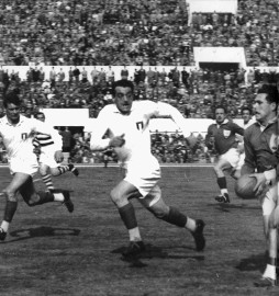 rugby-league-1954