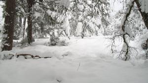 heavy-snowfall