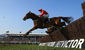 betvictor gold cup